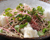 Chilled buckwheat soba noodles topped with vegetables