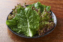 Sangchu (Korean stem lettuce)