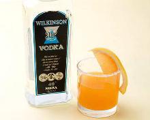 Vodka Rickey