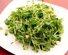 Stir-fried pea shoots