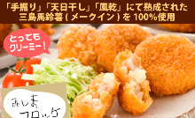 Vegetable croquette