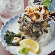 Horned turban sashimi