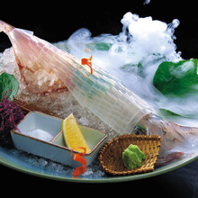 Live spear squid sashimi