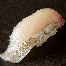 Wasabi sushi roll