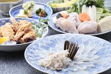 Tessa(fugu sashimi)