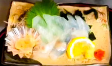 Thinly sliced thread-sail filefish sashimi