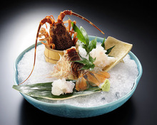 Ise ebi(spiny lobster)