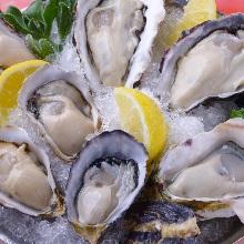 Raw oyster