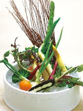 Vegetable sticks