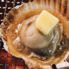 Scallops and soy sauce