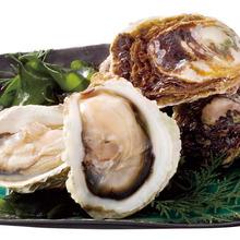 岩牡蠣「春香」