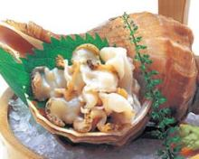 北海つぶ貝刺身
