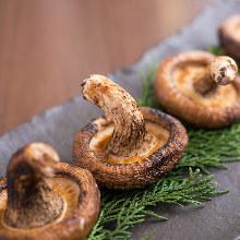 Grilled shiitake mushroom