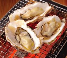 Assorted grilled oysters