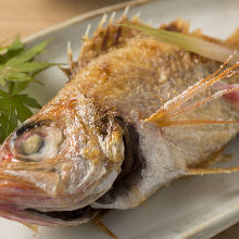 Rosy seabass, salted and grilled or boiled
