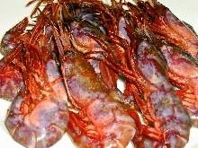 """""""Budo Ebi"""" (grape color shrimp)"""