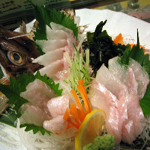 Sailfin poacher (sashimi)