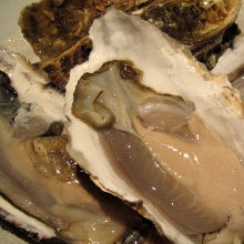 Oysters: raw or grilled