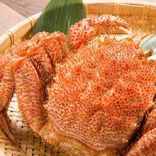 Boiled kegani (horsehair crab)