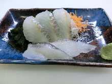 Mebaru (rockfish)