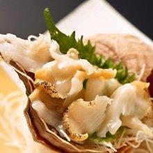 Live whelk sashimi