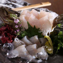 Other sashimi / fresh fish dishes