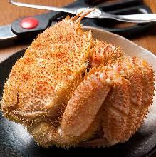 Kegani(horsehair crab)