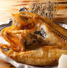 Kichiji rockfish