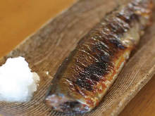 Salted and grilled saury