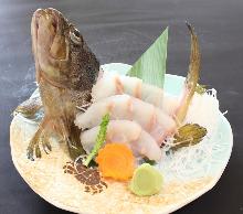 Ikejime rockfish (sashimi)