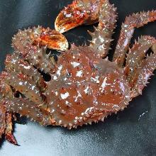 Hanasaki crab