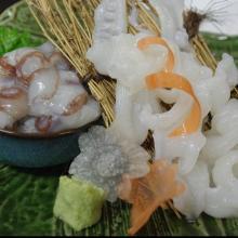 Octopus sashimi