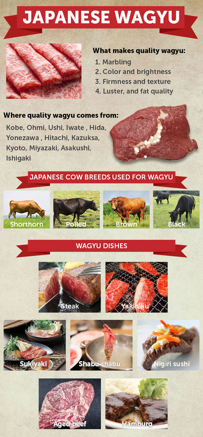 7f0568b1ed0d A Guide to Wagyu  Premium Japanese Beef