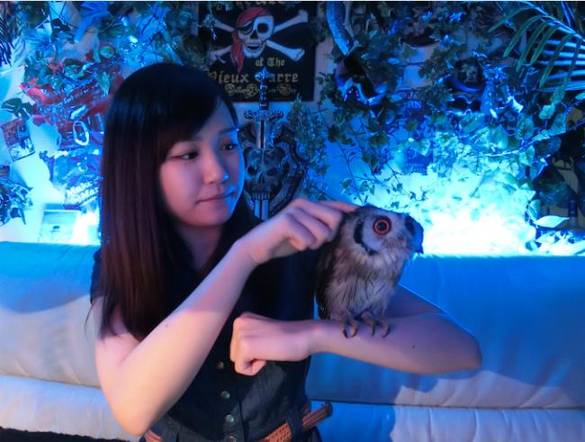 owl20