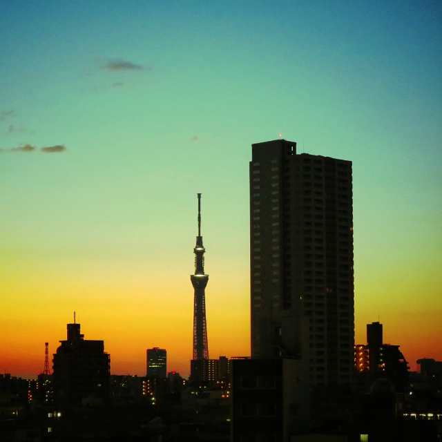 Five Family-Friendly Restaurants around the Tokyo Skytree