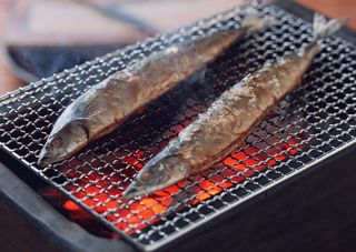 Grilled fish | Articles on Japanese Restaurants | Japan Restaurant Guide by Gourmet Navigator