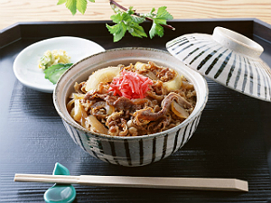 Discover Gyudon - Japan's Savory & Satisfying Beef Bowls