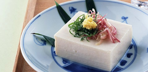 Tofu | Articles on Japanese Restaurants | Japan Restaurant Guide by Gourmet Navigator