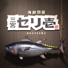 Nigiri Sushi Experience★A Firsthand Provisional Tour of How the Auction Works and Our Carving Show!!