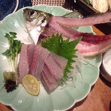 Horse mackerel sugata-zukuri (sliced sashimi served maintaining the look of the whole fish)
