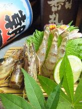 Japanese tiger prawn (sashimi)