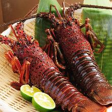 Spiny lobster (sashimi)