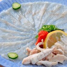 Premium tessa (Pufferfish sashimi)