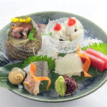Assorted sashimi of the season
