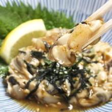 Raw oyster tartare