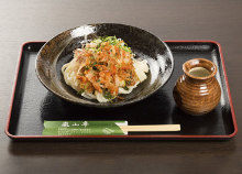 Mixed vegetable tempura udon