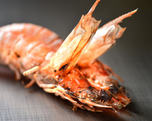 Salted and grilled Japanese tiger prawn