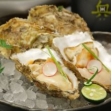 Oyster with shell