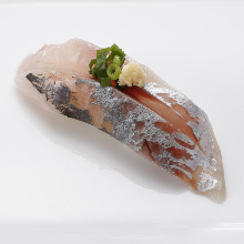 Aji(mackerel)