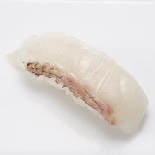 Madai(red seabream)